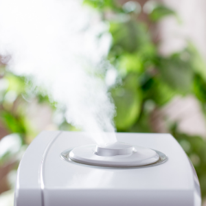 how long does it take for a humidifier to work?