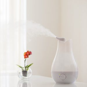 How To Prevent Calcium Buildup In A Humidifier